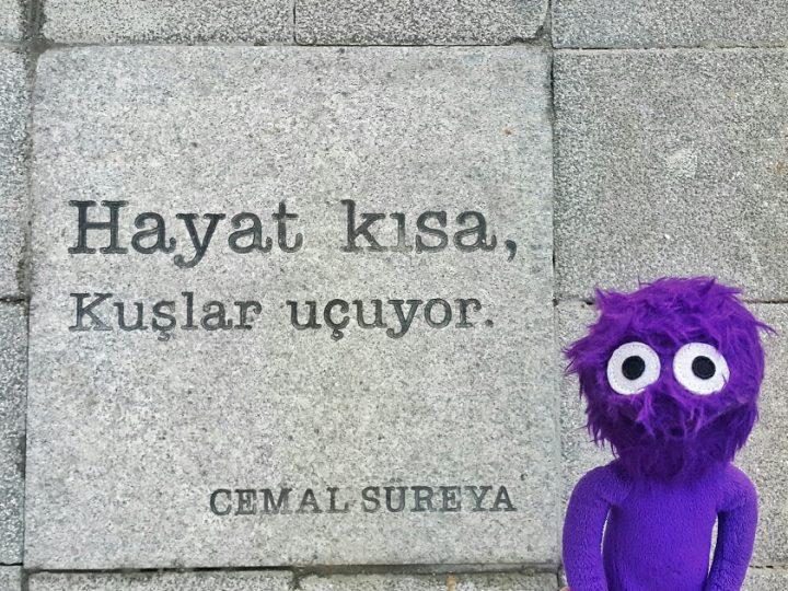 Kadıköy'ün Sokakları Cemal Süreya ve Özdemir Asaf Şiirleriyle Donatıldı