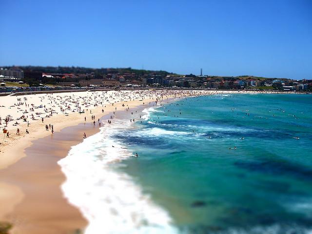 kukla-sureyya-sidney-bondy-beach